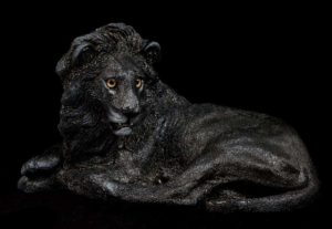 Melanistic Lion by Windstone Editions